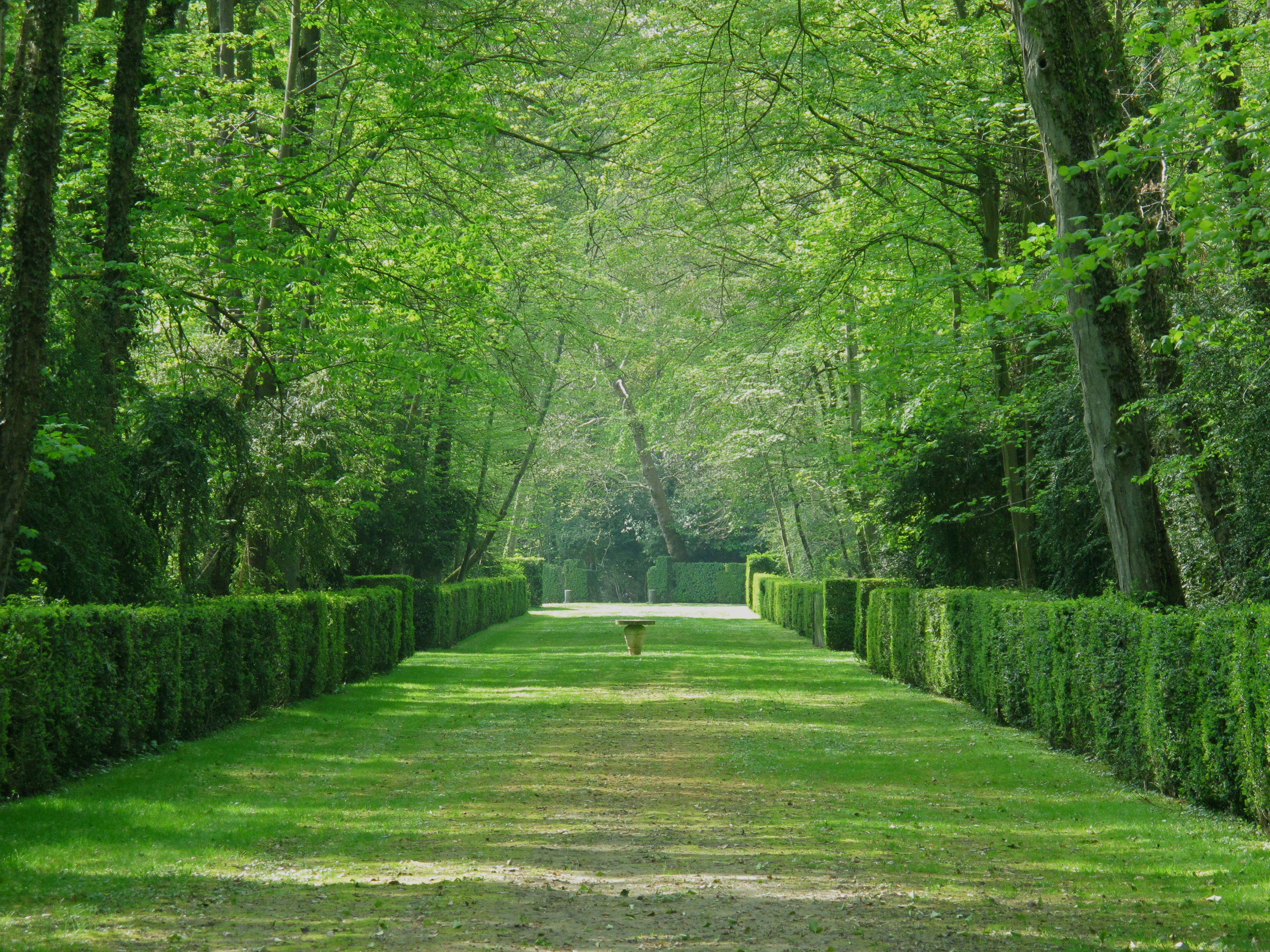 C cile luciani historienne des jardins et du paysage for Architecture des jardins et du paysage